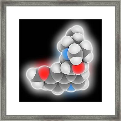 Quinine Drug Molecule Framed Print