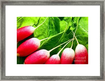 Radishes Framed Print by Craig B