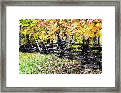 Rail Fence Fall Color Framed Print