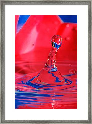 Framed Print featuring the photograph Rainbow Drop by Peter Lakomy