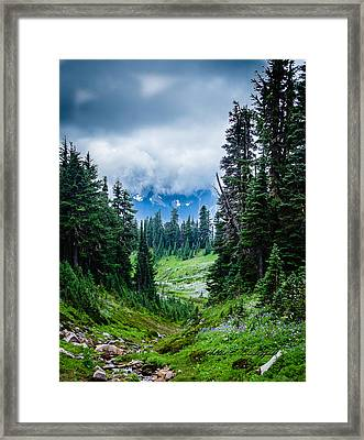 Rainer Glacial Meadow Framed Print
