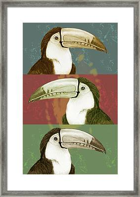 Rainforest Bird - Keel Billed Toucan Stylised Pop Art Drawing Potrait Poser Framed Print