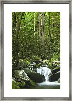 Rapids At Springtime Framed Print by Andrew Soundarajan