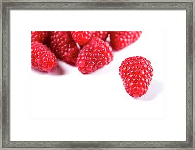 Raspberries Framed Print by Aberration Films Ltd