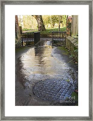 Raw Sewage Framed Print by Sheila Terry