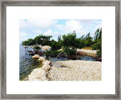 Framed Print featuring the photograph Reclamation 6 by Amar Sheow