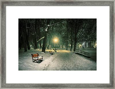 Red Bench In The Park Framed Print by Jaroslaw Grudzinski