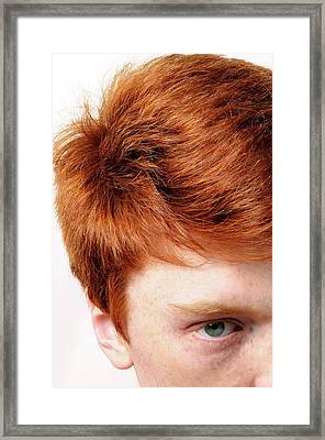 Red-haired Teenage Boy Framed Print by Cordelia Molloy
