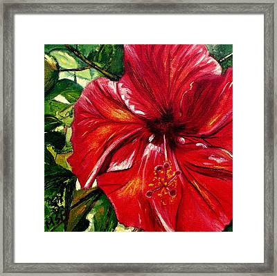 Red Hibiscus Framed Print by Maria Soto Robbins
