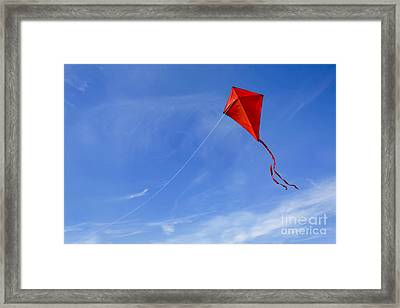 Red Kite In The Sky Framed Print by Diane Diederich