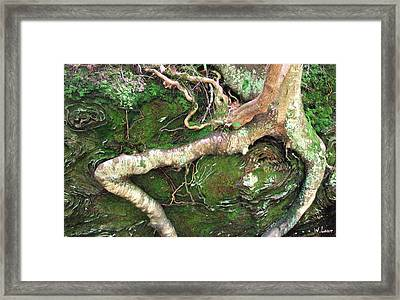 Red River Gorge Framed Print