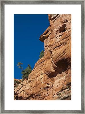 Red Sandstone Cliffs & Trees At Palatki Framed Print by Ellen Thane
