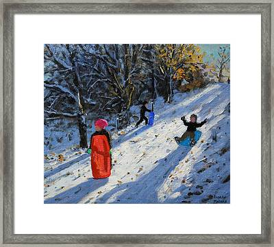 Red Sledge Framed Print by Andrew Macara