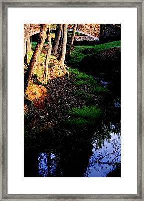 Framed Print featuring the photograph Reflection2 by Steve Godleski