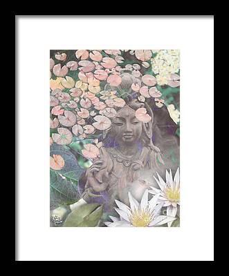 Zen Garden Framed Prints