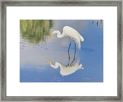 Reflective Pose Framed Print