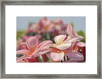 Reminiscence Framed Print by Sharon Mau