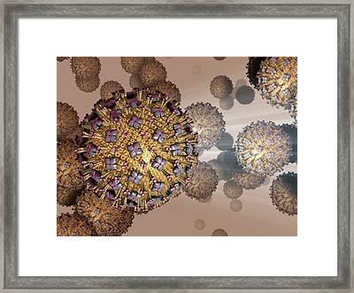 Respiratory Syncytial Virus Framed Print by Hipersynteza