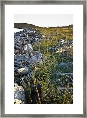 Restful July Beachhead Framed Print by Tom Trimbath