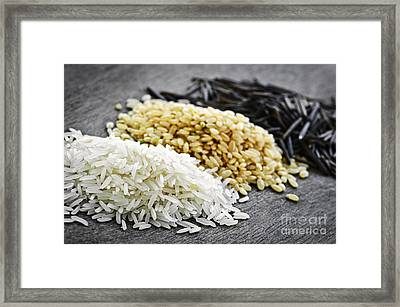 Rice Framed Print by Elena Elisseeva