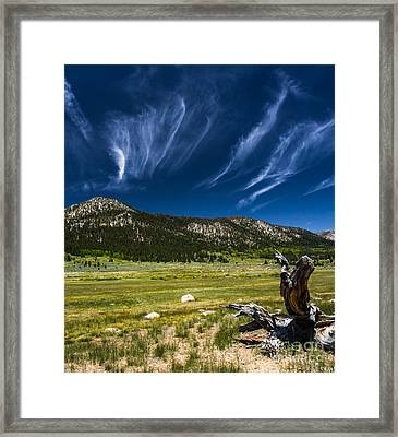 Riders In The Sky Framed Print by Mitch Shindelbower