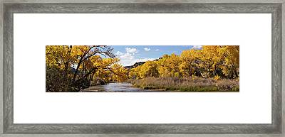 Rio Grande River At The Orilla Verde Framed Print by Panoramic Images