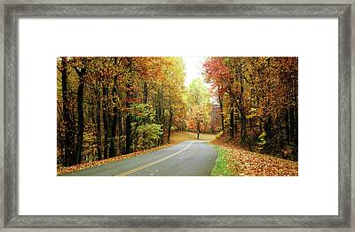 Road Passing Through A Forest, Blue Framed Print by Panoramic Images