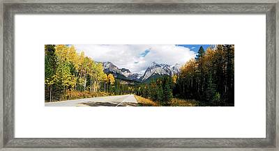 Road Passing Through A Forest, Yoho Framed Print by Panoramic Images