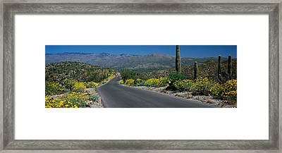 Road Passing Through A Landscape Framed Print by Panoramic Images