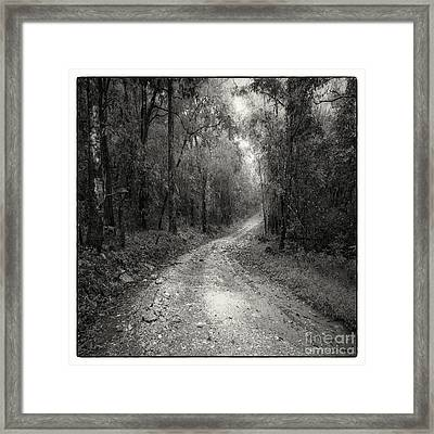 Road Way In Deep Forest Framed Print by Setsiri Silapasuwanchai