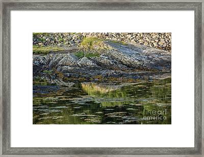 Rocks At Scotland Loch Framed Print