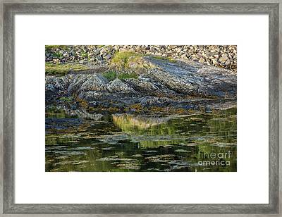 Rocks At Scotland Loch Framed Print by Iris Richardson