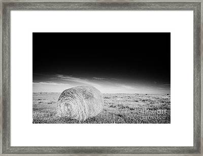 rolled hay bales in rural prairie grassland open fields bengough Saskatchewan Canada Framed Print by Joe Fox