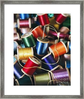 Rolls Or Yarn Framed Print