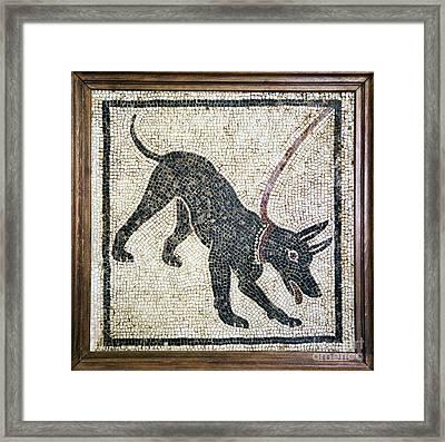 Roman Guard Dog Mosaic Framed Print by Sheila Terry