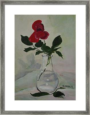 Rose Framed Print by Barbara Moak