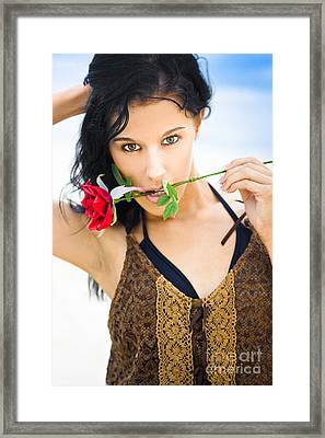 Rose Enchantress Framed Print by Jorgo Photography - Wall Art Gallery
