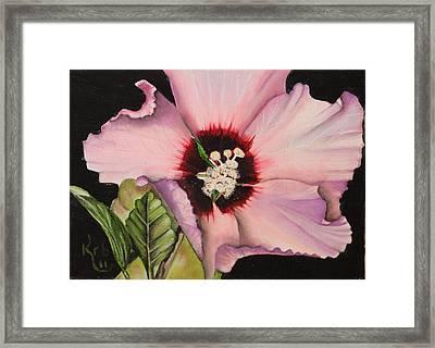 Rose Of Sharon Framed Print by Karen Beasley