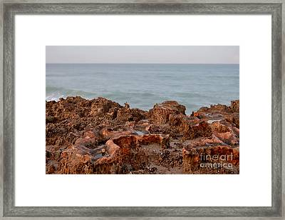 Ross Witham Beach Hutchinson Island Martin County Florida Framed Print by Olga Hamilton