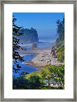 Ruby Beach Framed Print