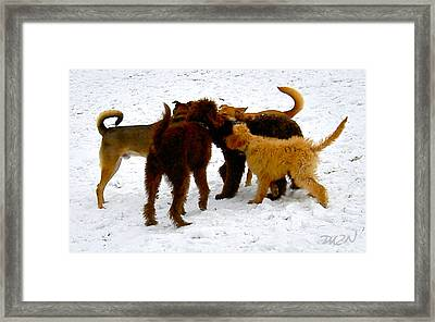Bow-wow Powwow Framed Print