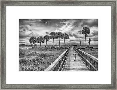 Running Framed Print by Howard Salmon