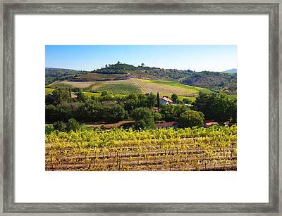 Rural Landscape Framed Print by Carlos Caetano