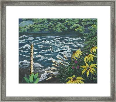 Rushing Water Framed Print by Suzanne Theis