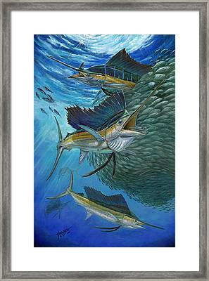 Sailfish With A Ball Of Bait Framed Print