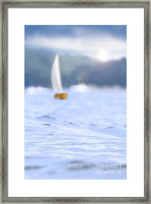 Sailing Framed Print by Stephanie Frey