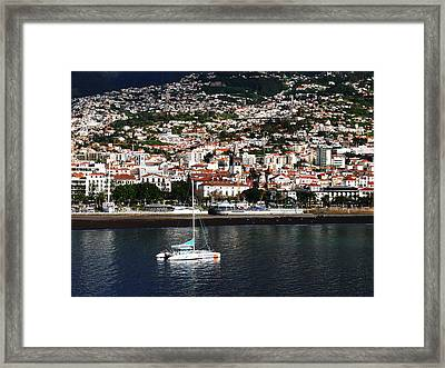Sailing Framed Print by Tracy Winter