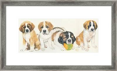 Saint Bernard Puppies Framed Print by Barbara Keith