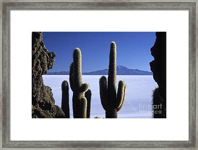 Salar De Uyuni And Tunupa Volcano Framed Print