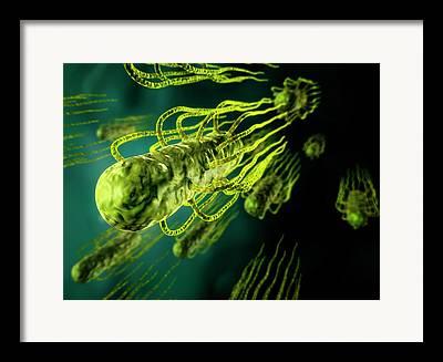 Flagella Framed Prints